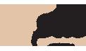 plie_default_logo